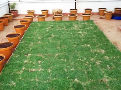 terrace-garden-area